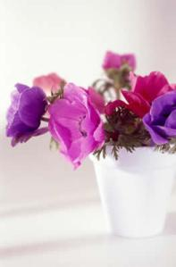 purple-flower-vase